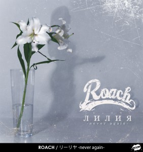 ROACH_lily
